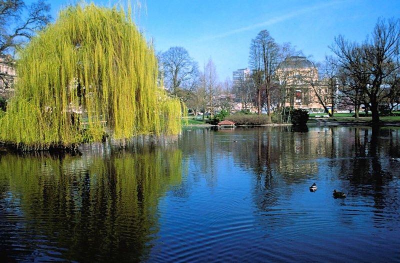 Wiesbaden-warmer-damm